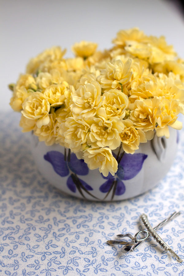Mini-Yellow-Roses---Bit-Square-Blog