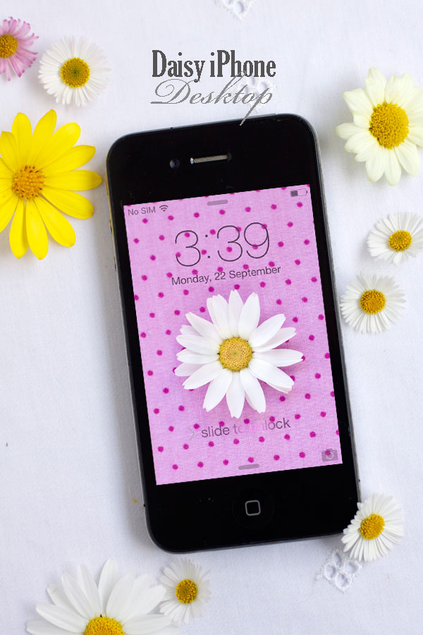 Daisy and Polka Dot iPhone Desktop Free Download