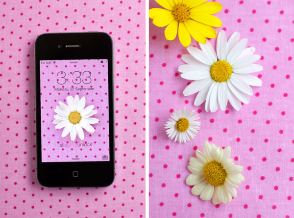 daisy-polka-dot-desktop-background-for-iphone-4,-5-and-6-composite