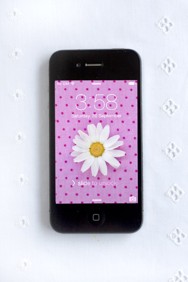 download-image-ipohne-polka-dot-daisy-background
