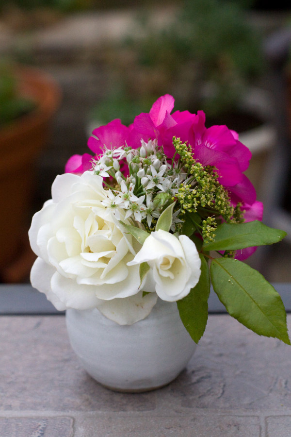 DIY Mini Garden Flower Arrangement : Rose, Geranium, Parsley and Chive