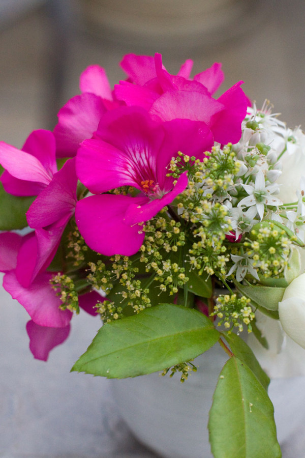 DIY Mini Flower Arrangement : Rose, Geranium, Parsley and Chive