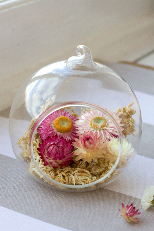 Straw Flower Hanging Glass Terrarium for Autumn/Fall DIY