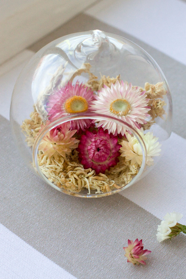 Straw Flower Hanging Glass Terrarium DIY