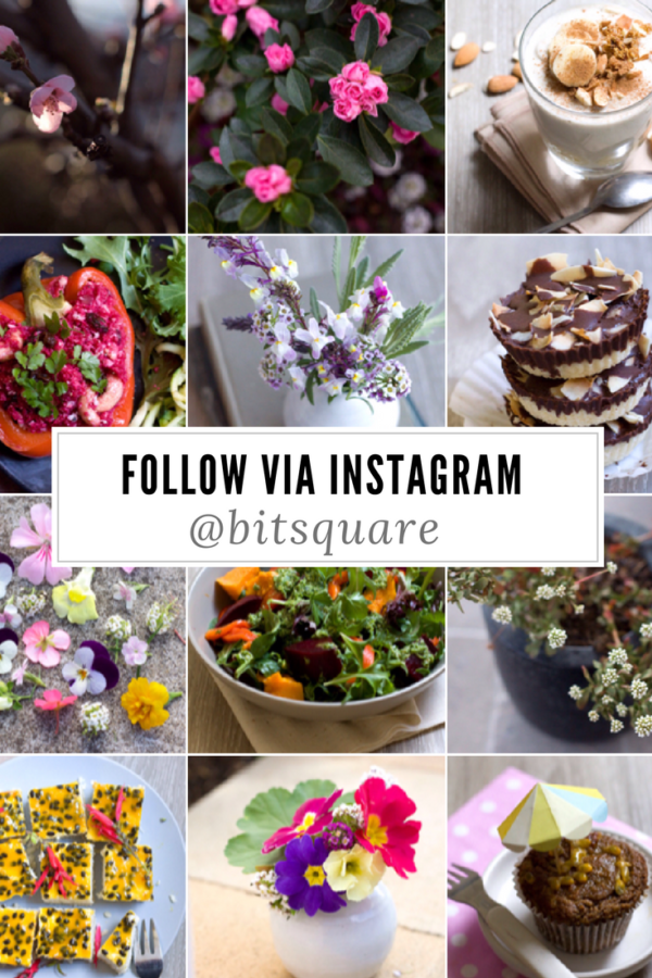 Australian Lifestyle Bloggers to follow on Instagram - Flowers, Crafts, Healthy Paleo Recipes